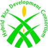 Hybrid Rice Development Consortium